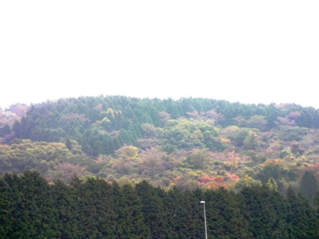 富士スピードウェy